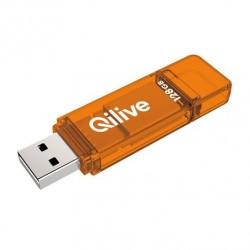 QILIVE Clé USB 128 Go USB...